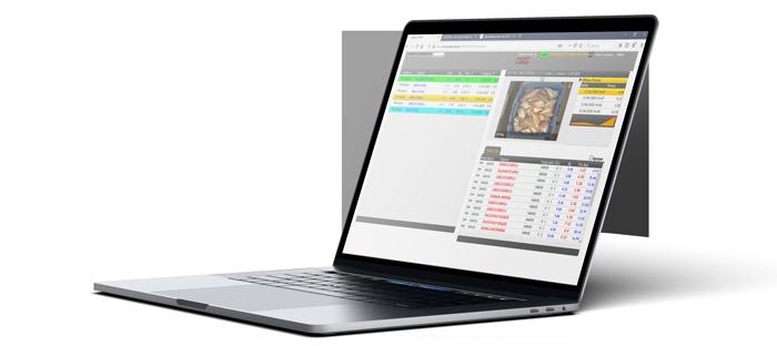 Software subastas de pescado